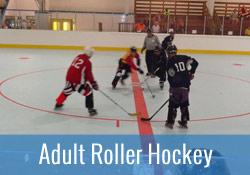 adult inline hockey league stem